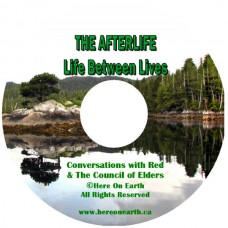 Afterlife MP3